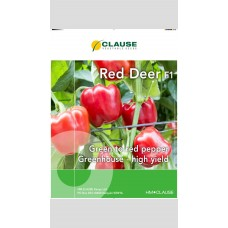 Capsicum - Red Deer F1